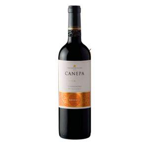 CanepaMagnificumCabernetSauvignon-productos-ladespensa.com.co